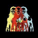 Lil Wayne – Vizine (mp3)