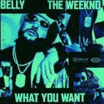 Belly – What You Want ft. The Weeknd (mp3)
