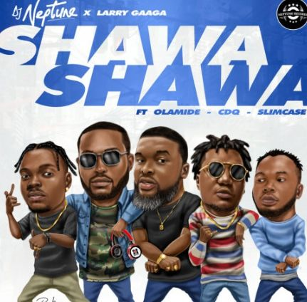 dj neptune shawa shawa download