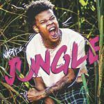Nasty C – Jungle (mp3)