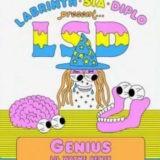 LSD – Genius (Remix) Ft. Lil Wayne