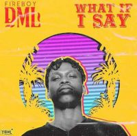 Download mp3 Fireboy DM What If I Say mp3 download