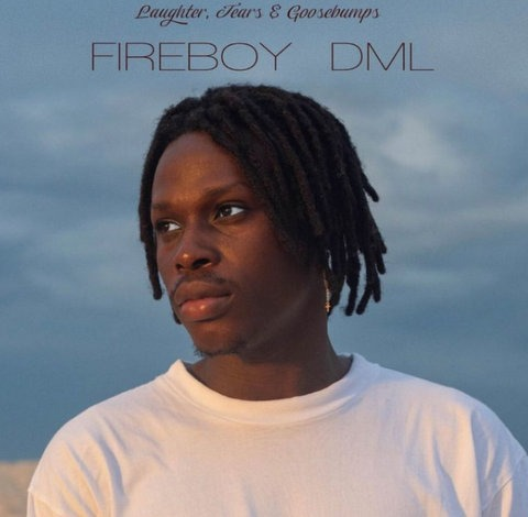 Fireboy DML Vibration mp3