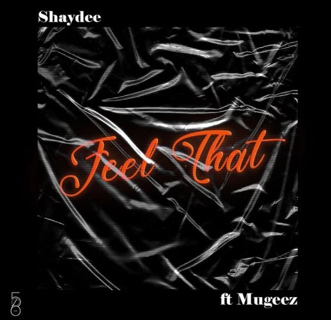 Shaydee ft. Mugeez Feel That mp3