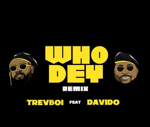 Trevboi ft. Davido Who Dey (Remix) mp3