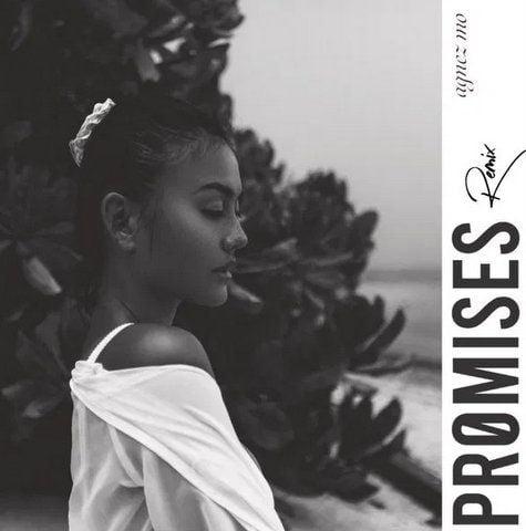 AGNEZ MO Promises (Remix) mp3