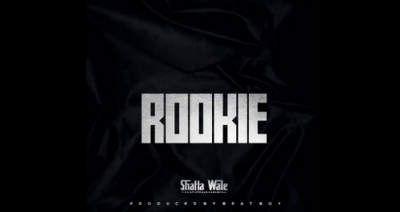 Shatta Wale Rookie mp3